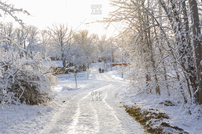 Rural Road Covered In Snow Jarfalla Sweden Stock Photo