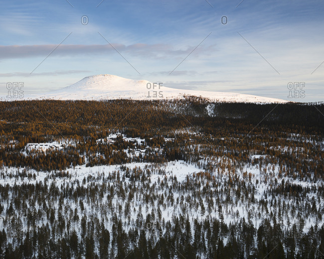Forest and mountain during winter in Dalarna, Sweden