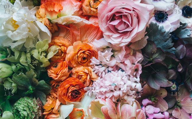 Flower gradient featuring fresh springtime botanicals