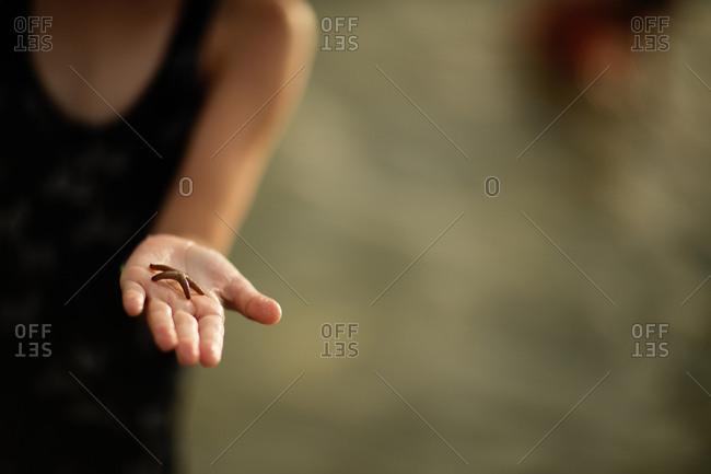 Child holding starfish
