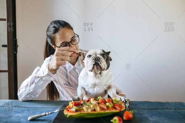 Woman feeding French bulldog at table