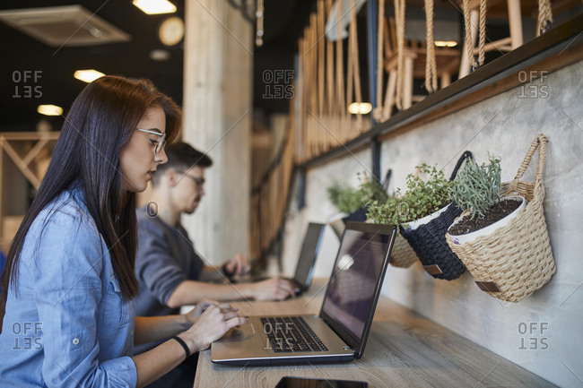 Young woman and man in a cafe using laptops