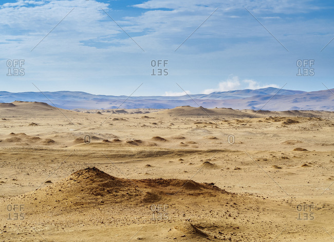 Paracas National Reserve, Ica Region, Peru, South America