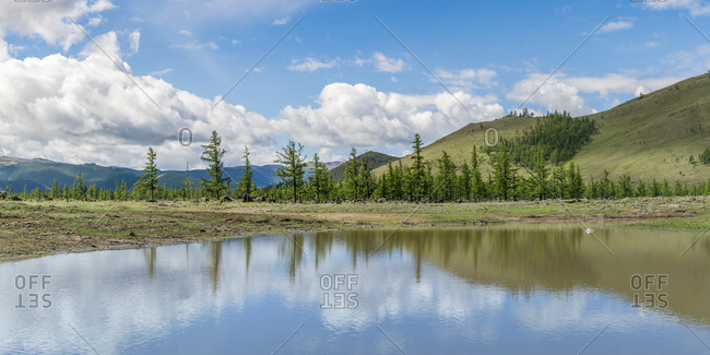 Water pond and fir trees in White Lake National Park, Tariat district, North Hangay province, Mongolia, Central Asia, Asia