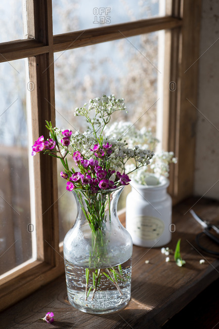 Fresh Flowers on a Windowsill