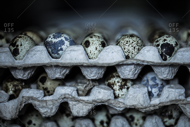 Close up of large number of quail eggs stacked in cartons at the market