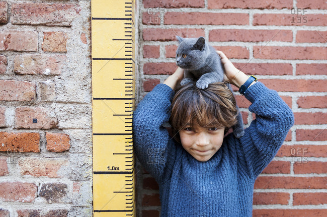 Boy holding pet cat on head while standing next to growth chart
