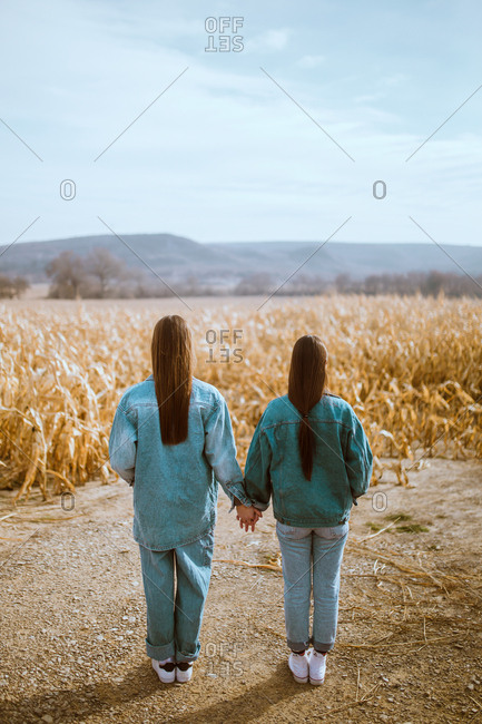 Back view of women couple holding hands and posing at field in autumn