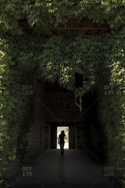 Silhouette of woman walking through the entrance of the portal covered by bindweed