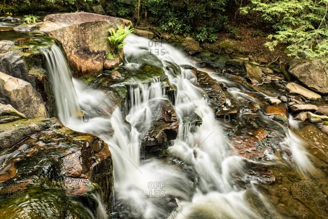 Pendleton Creek Falls
