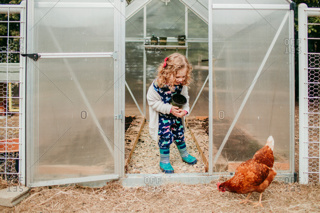 Young girl surprised by chicken outside greenhouse