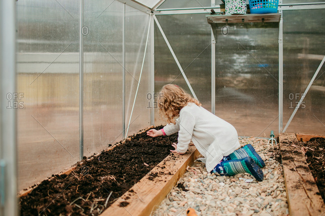 Girl sprinkling seeds in greenhouse garden bed