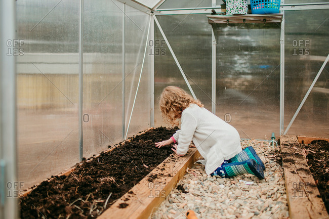 Young girl patting soil on top of planted seeds
