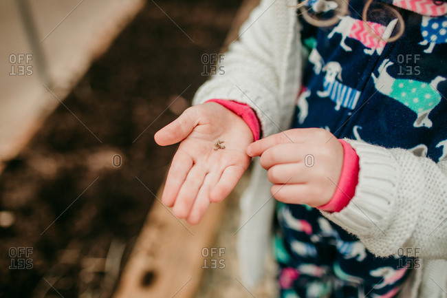 Little girl pointing out seeds in palm of her hands