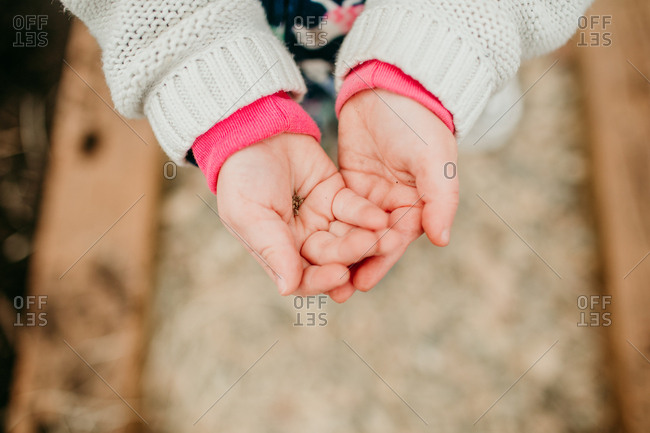 Girl holding onto seeds in her hands