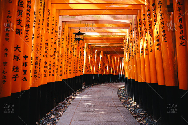 Interior Torii gate structure