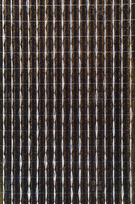 Abstract aerial view of a field in countryside.