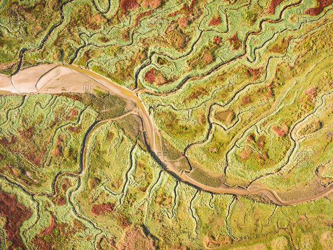Aerial photography of polder in Nieuw Namen, Zeeland, Netherlands.