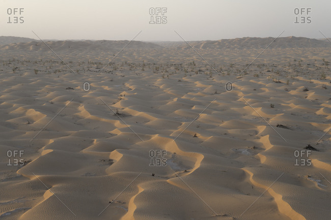 Sand dunes in the Empty Quarter, Oman
