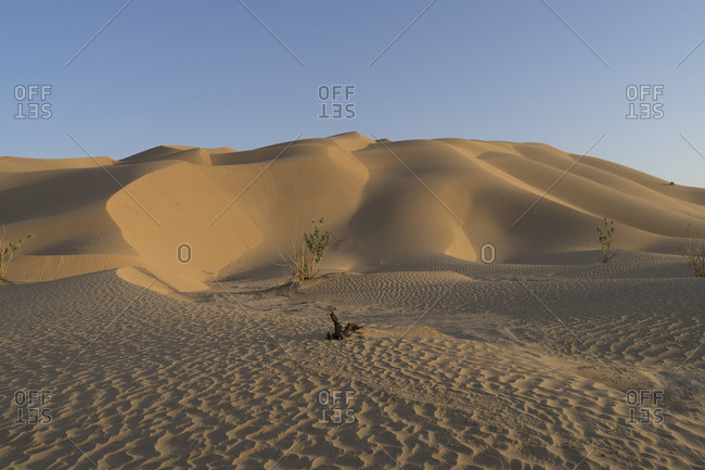 Desert sand dunes at dusk in the Empty Quarter, Oman