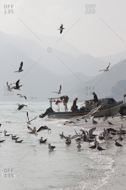 Dhofar Governorate, Oman - November 25, 2017: Fishermen on Mughsail Beach, Dhofar Governorate, Oman