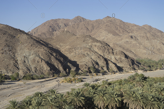 A narrow valley of date plantations south of Muscat, in the Sumail Gap, Oman