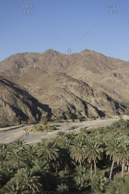 Valley of date plantations south of Muscat, in the Sumail Gap, Oman