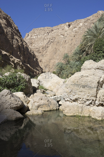 Narrow canyon of rock pools and palm groves, set in Oman's Sharqiya region