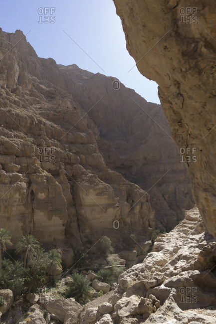 Narrow canyon and palm groves in Oman's Sharqiya region