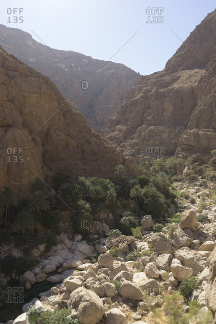Canyon and palm groves in Oman's Sharqiya region, Wadi Shab, Oman