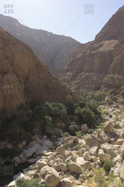Canyon and palm groves in Oman's Sharqiya region, Wadi Shab, Oman