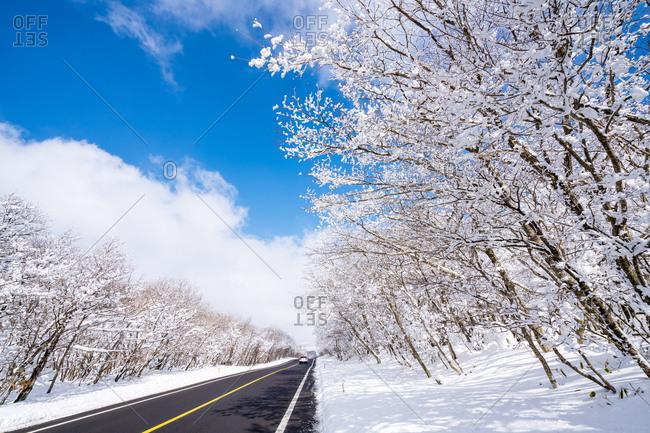 Rural winter scene in Korea
