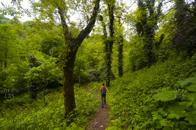 Caucasian man hiking on path in forest