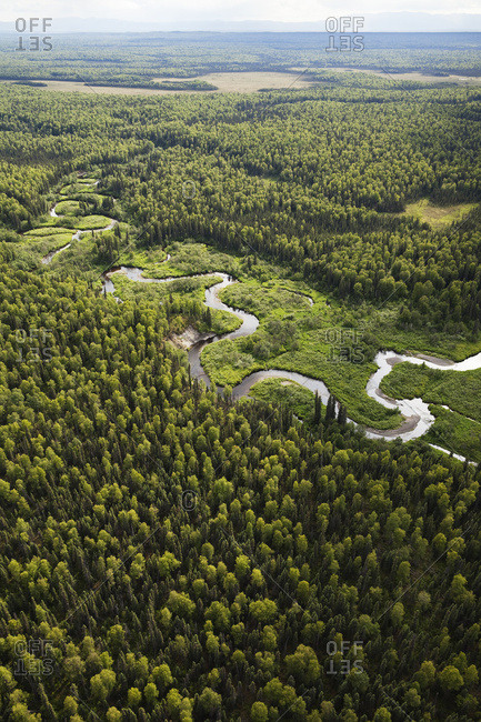 A River Winding Through A Forested Landscape, Matanuska-Susitna Borough; Alaska, United States Of America