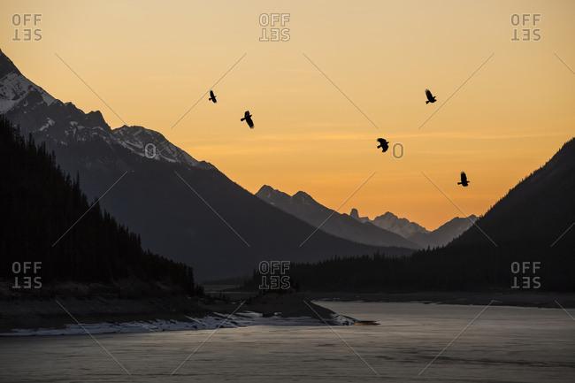 Alberta Mountains And Lakes; Alberta, Canada