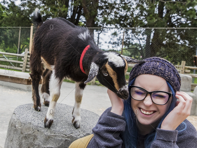 Young Woman Spends Time With A Curious Baby Goat At Beacon Hill Children's Farm; Victoria, British Columbia, Canada