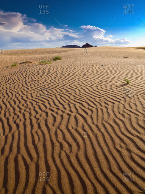 Ripples in a sandy summer desert scene; Hanksville, Utah, United States of America