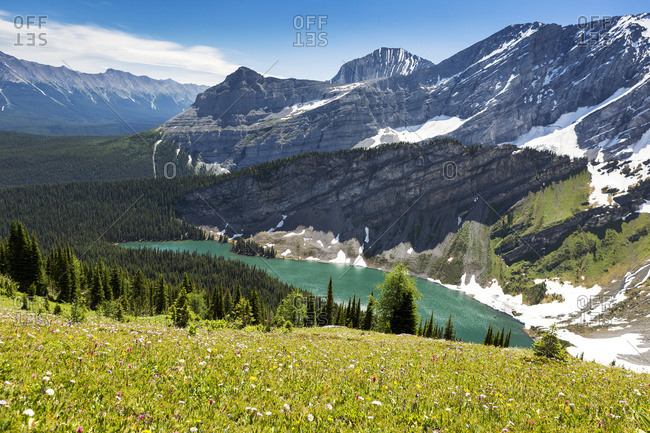 Alpine flowers on hillside with alpine lake and mountain range; Kananaskis Country, Alberta, Canada