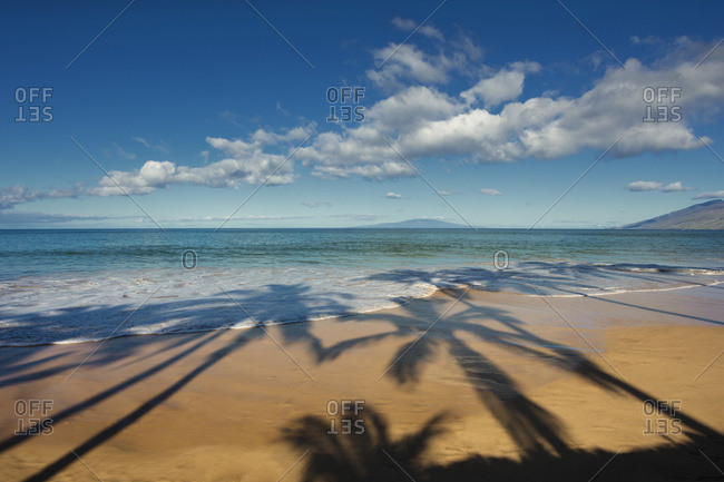 Shadows of palm trees on a beach on a sunny day; Maui, Hawaii, United States of America
