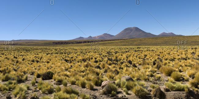 Licancabur Volcano; San Pedro De Atacama, Antofagasta Region, Chile