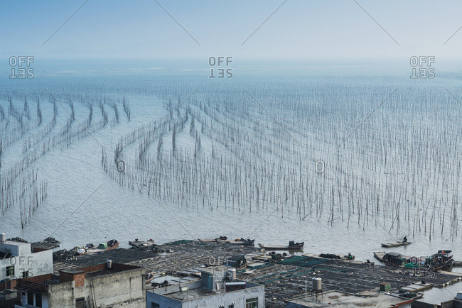 Fishing Village And A Structure Made Of Posts In The Water For Hanging Fishing Nets To Dry; Xiapu, Fujian, China