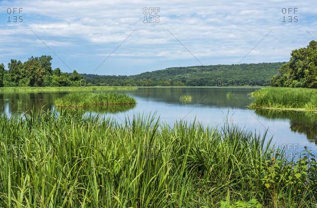 Sally Jones Lake, Sequoyah National Wildlife Refuge; Vian, Oklahoma, United States Of America