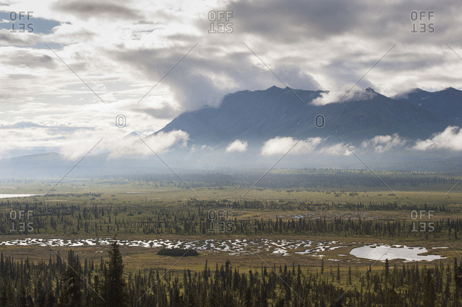 Scenic View Of Boreal Forest And Tundra Ponds With Chugach Mountains In The Background, South-central Alaska