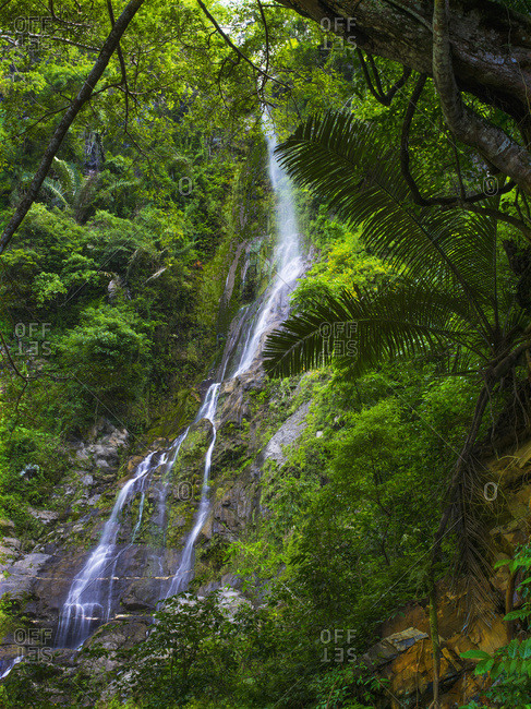 Waterfall On The Mountains With Lush, Green Foliage; Timor-Leste
