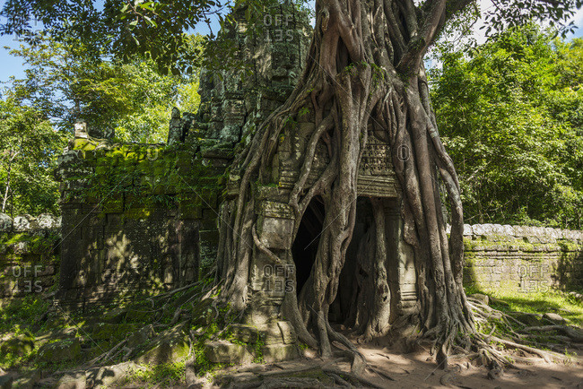 Ta Som Temple, Built By The King Jayavarman Vii In The 12th Century, From Angkor; Siem Reap, Cambodia
