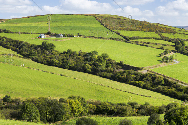Lush Green Hilly Pastures With Trees Separating Fields And Blue Sky And Clouds
