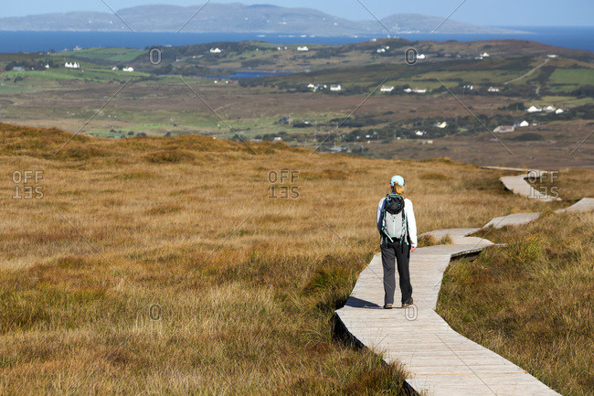 Female Hiker Walking Along A Boardwalk Over Grassy Bog Land With The Bay In The Far Distance; Letterfrack, County Galway, Ireland