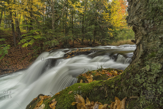 Water Flowing Over Skeleton Falls In Autumn, Near Bracebridge; Ontario, Canada