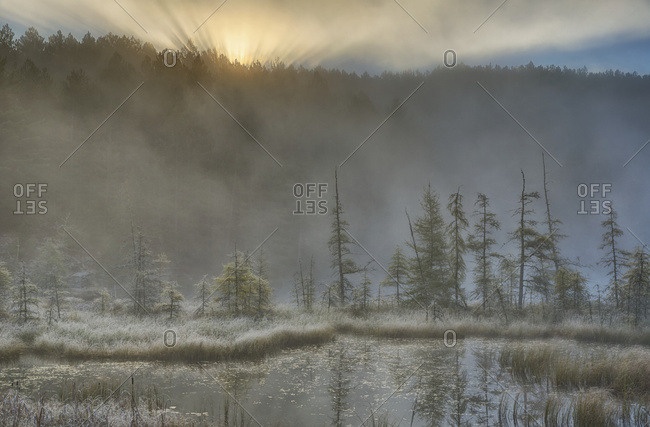 Early Morning Mist Over A Small Pond Along The Rock Lake Road As Sun Shines Through The Fog, Algonquin Park; Ontario, Canada