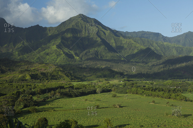 Hanalei Valley And Valley Walls; Kauai, Hawaii, United States Of America